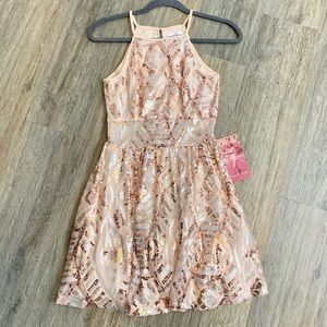 New Years Champagne Pink Sequined  Gold Dress